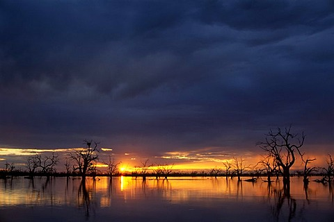 Sunset at Lake Menindee, Kinchega National Park, New South Wales, Australia