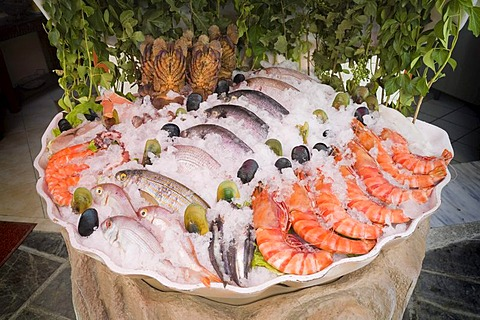 Fish and shellfish on display in front of a restaurant in the harbour of Rethymnon, island of Crete, Greece, Europe