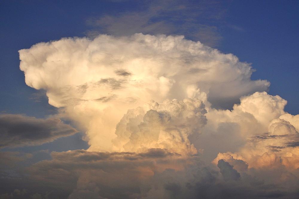 Cumulus mediocris cloud formation, congestus, in the evening at sunset, Freising, Upper Bavaria, Bavaria, Germany, Europe