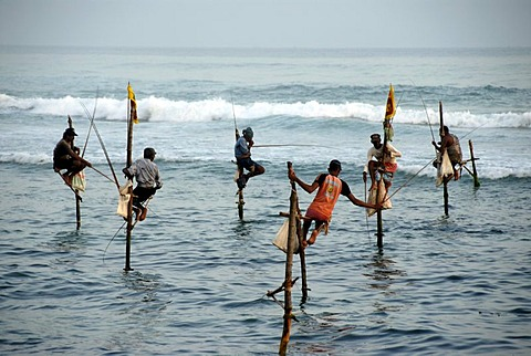 Stilt fishermen, fishermen on stilts fishing in the shallow water, Indian Ocean, Ceylon, Sri Lanka, South Asia, Asia