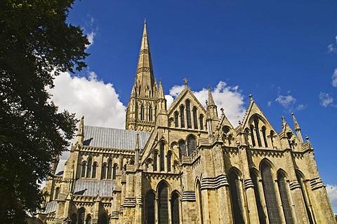 Salisbury Cathedral, Salisbury, Dorset, South England, England
