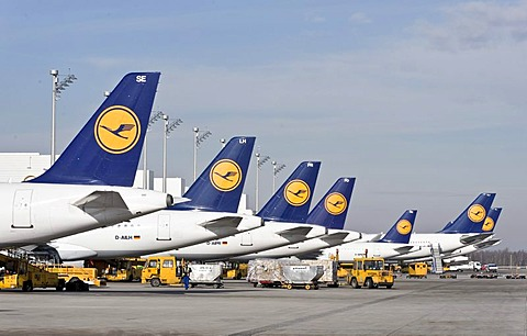 Passenger planes of the German airline Lufthansa standing at Terminal 2 on Munich Airport, Bavaria, Germany, Europe