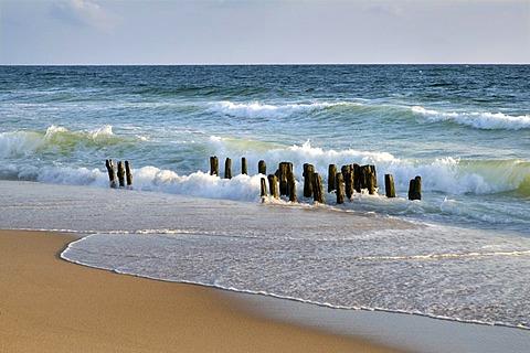 Groynes on the beach, Rantum, Sylt, North Frisia, Schleswig-Holstein, Germany, Europe
