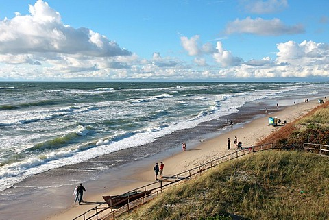 Baltic coast and dune in the Kuroeiu Nerija National Park on the Curonian Spit in Lithuania