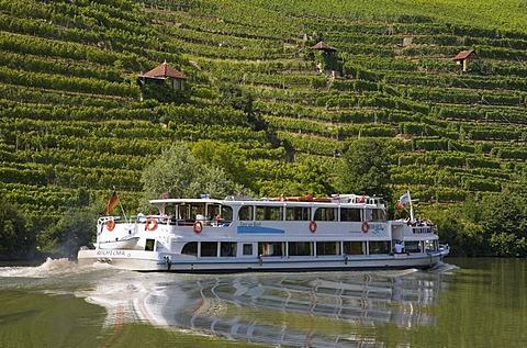 Excursion boat on Neckar River near Hofen, vineyards, wine growing, Stuttgart, Baden-Wuerttemberg, Germany