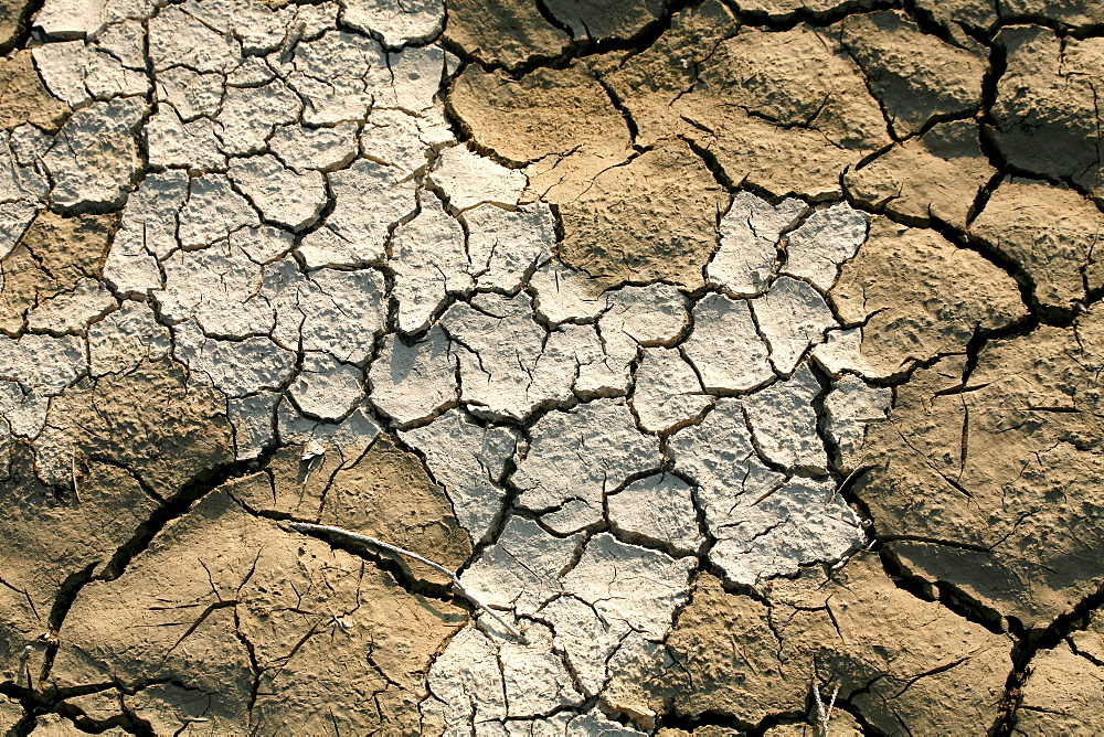 Dry river bed, detail