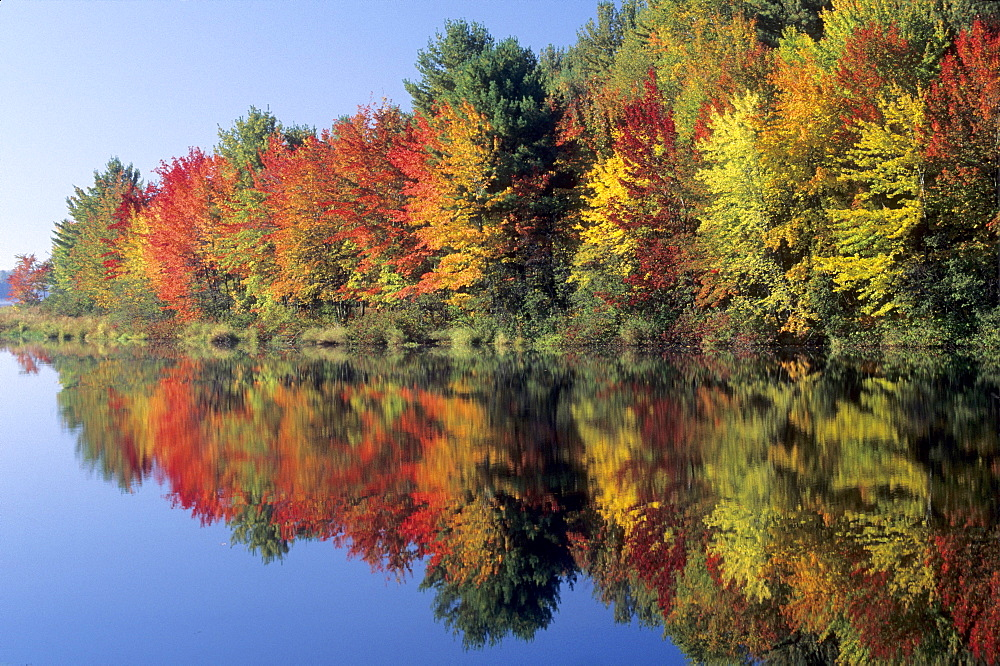 Autumnal reflection in a lake, Vermont, USA