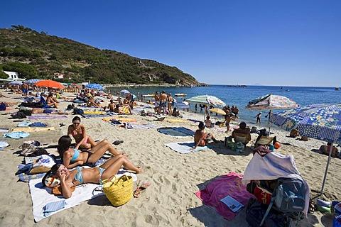 Beach of Cavoli, Elba, Tuscany, Italy, Mediterranean, Europe