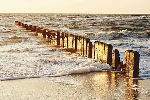 Groyne at the beach in Kampen, Sylt Island, North Sea, Schleswig-Holstein, Germany, Europe