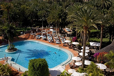 Swiming pool in a palm garden, Design Palm Beach Hotel, Grand Canary, Canary Islands, Spain, Europe