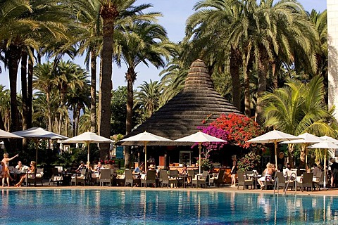 Swimming pool in a palm garden, Design Hotel Palm Beach, Grand Canary, Canary Islands, Spain, Europe
