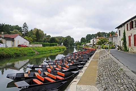 Boats, Marais Poitevin, river and marshes, Coulon, Poitou Charentes, France, Europe