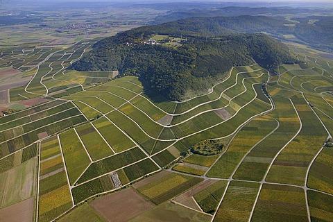 Aerial view, vineyards, Iphofen, Bavaria, Germany, Europe