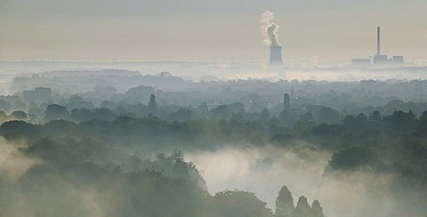 Aerial picture, Uentrop Lippe-Auen, late summer morning fog, Lippe, Datteln-Hamm Canal, east, Westfalen power plant, RWE-Power, Hamm, Ruhr area, North Rhine-Westphalia, Germany, Europe