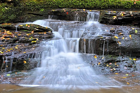 Waterfall, North Black Forest, Baden-Wuerttemberg, Germany, Europe