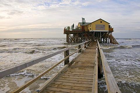 Restaurant Strandbar built on stilts off the St. Peter-Ording beach, Eiderstedt Peninsula, Schleswig-Holstein, Germany, Europe