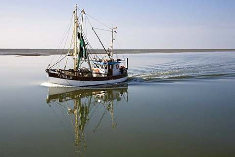 Crab cutter in still waters on the North Sea, Schleswig-Holstein, Germany, Europe