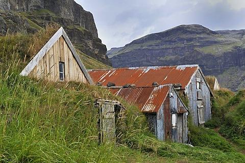 Nupsstadur storage sheds, overgrown with grass, Iceland, Europe