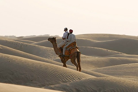 Camel with 2 riders at the sand dunes at Sam, Thar Desert, Rajasthan, North India, Asia