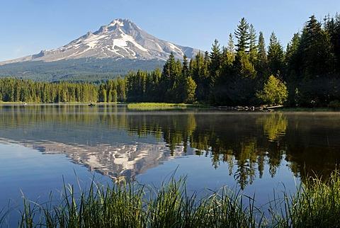 Trillium Lake and Mount Hood volcano, Cascade Range, Oregon, USA