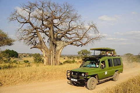 Tourists under a Baobab tree (Adansonia digitata) on safari in a four wheel drive vehicle, Tarangire-National Park, Tanzania, Africa
