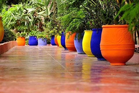 Jardin Majorelle, Marrakech, Morocco, Africa - 832-250108