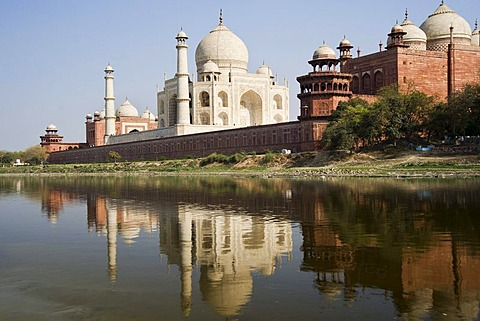 Taj Mahal reflecting in the Yamuna river, UNESCO World Heritage Site, Agra, Uttar Pradesh, India, South Asia