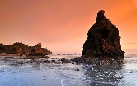 Rialto Beach, Mora, Olympic National Park, Washington, USA, North America
