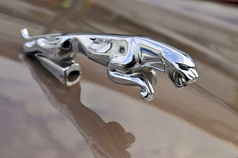 Hood ornament of a Jaguar XJ6