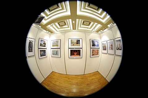 Fisheye picture, gallery, exhibition, photography