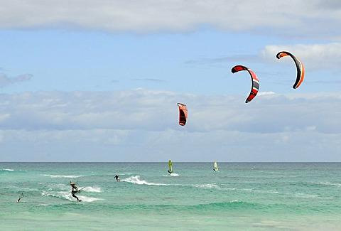 Kitesurfer at the Playa Bajo Negro Beach, Corralejo, Fuerteventura, Canary Islands, Spain, Europe
