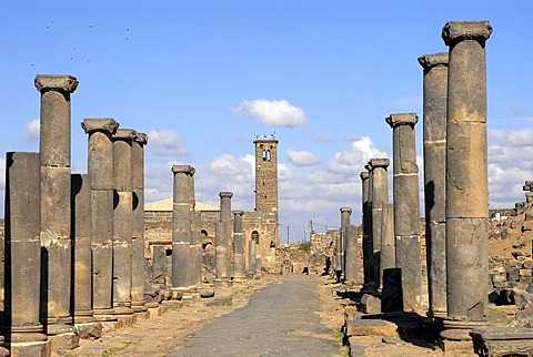 Roman colonnade in Bosra, Syria, Middle East, Asia