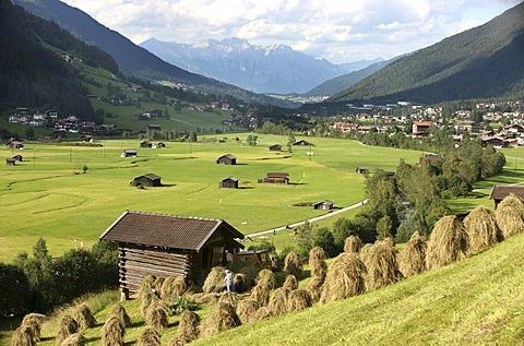 Hay harvest in Neustift in Stubai Valley, Tyrol, Austria, Europe