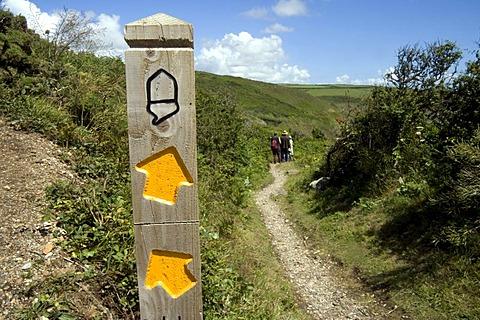 Acorn symbol on South West Coastal Path near Praa Sands, Cornwall, England, Great Britain, Europe