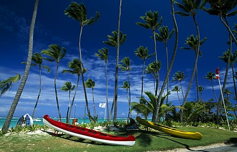 Boats on a palm beach on the Playa Bavaro, Punta Cana, Dominican Republic, Caribbean