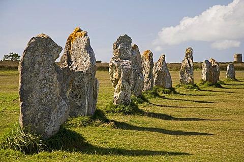 Menhirs, Les Alignements de Lagatjar near Camaret-sur-Mer, Crozon peninsula, Finistere, Brittany, France, Europe