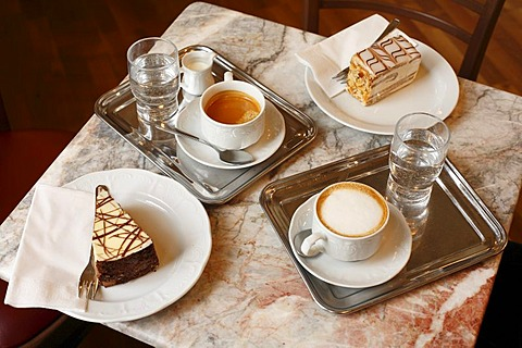 Coffee and cake, Viennese Melange, coffee with frothy milk and Grosser Brauner, cafe au lait, Vienna, Austria, Europe
