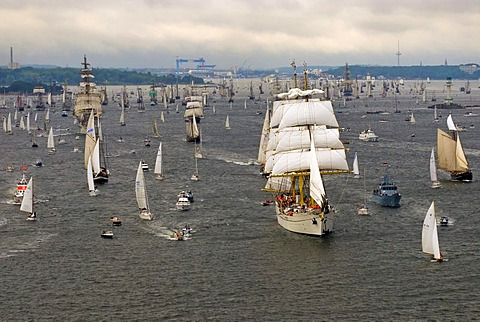 Winderjammer Parade at Kieler Woche 2008 with German sail training vessel and command ship Marine Gorch Fock and further traditional sailing vessels, Kiel Fjord, Schleswig-Holstein, Germany, Europe
