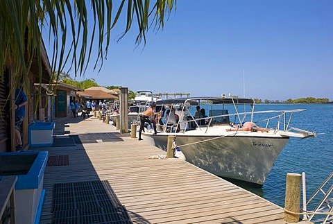 Jetty, boats, diving school, Hotel Anthony's Key Resort, Roatan, Honduras, Central America
