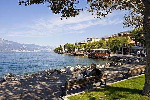 Pensioners sitting on a park bench in Torri del Benaco on Lake Garda, Lago di Garda, Lombardy, Italy, Europe