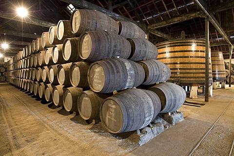 Oak barrels filled with port wine of Graham's Port Wine House on Rua Rei Ramiro, Vila Nova Gaia, Porto, Portugal, Europe - Propertyrights www.symington.com JD@symington.com