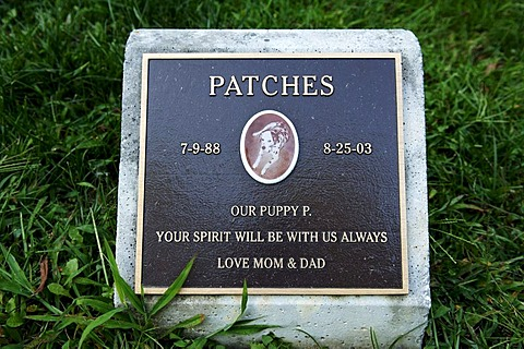 Gravestone of a dog in a pet cemetery, Blairstown, New Jersey, USA