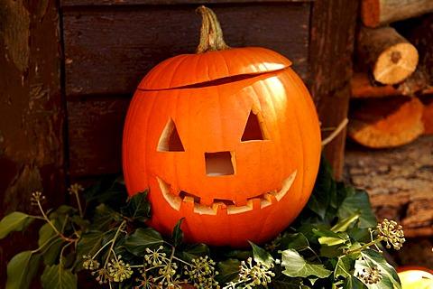 Pumpkin (Cucurbita pepp var. patisson) carved face, Hersbruck, Bavaria, Germany, Europe