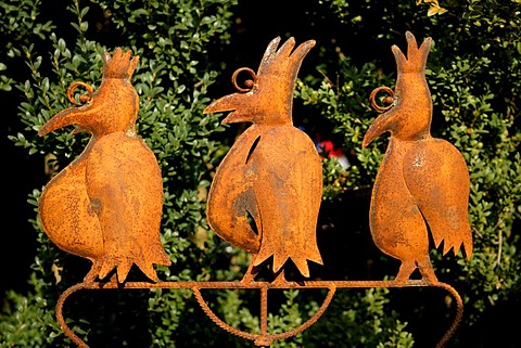 Rusted fantasy birds made of metal in a garden exhibition, Wachenroth, Middle Franconia, Bavaria, Germany, Europe