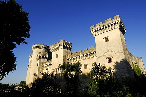 Chateau du Roi Rene Castle, Tarascon, Provence, France, Europe