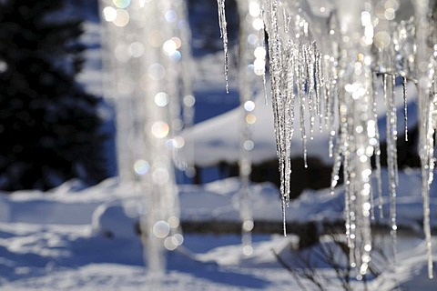 Icicles on Dunton Hot Springs Lodge in Colorado, USA - 832-261771