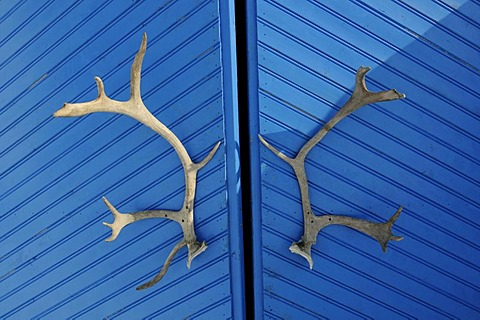 Entry doors to the igloo-hotel with caribou-antlers, Snow Hotel, Kirkenes, Finnmark, Lapland, Norway, Scandinavia, Europe