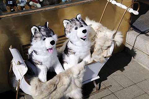 Stuffed huskies in a child's sled outside a rummage store, Esplanade, Helsinki, Finland, Europe
