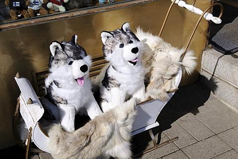 Stuffed huskies in a child's sled outside a rummage store, Esplanade, Helsinki, Finland, Europe