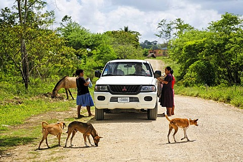 Local women selling souvenirs to tourists in a Mitsubishi car, dogs, horse, unmade road, Punta Gorda, Belize, Central America, Caribbean